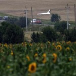 Wreckage of a Malaysia Airlines Boeing 777 plane is seen, with sunflowers in the foreground, near the settlement of Grabovo in the Donetsk region