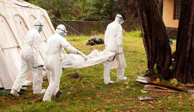 Petugas medis di Liberia membawa jenazah penderita virus Ebola.