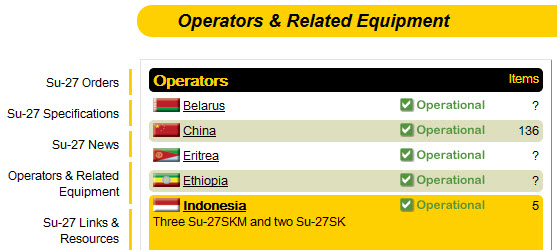 Jumlah Jet Tempur Su 27 SKM Indonesia