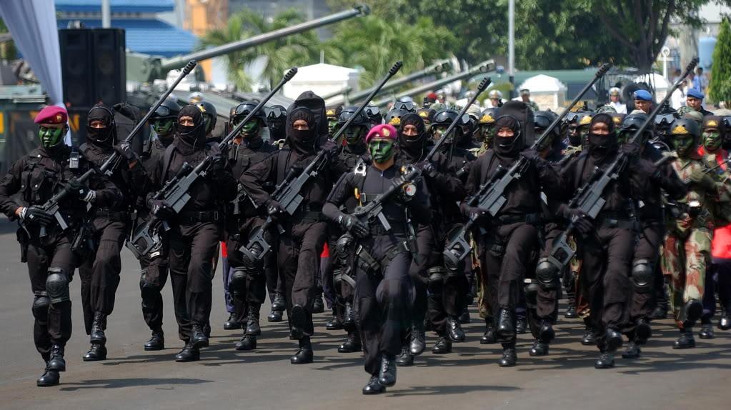 Pasukan Intai Amfibi Korps Marinir TNI AL - Taifib