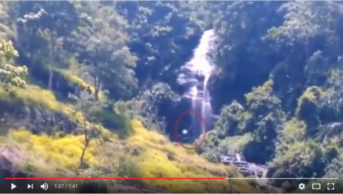 Inikah Penampakan Bigfoot di Indonesia?