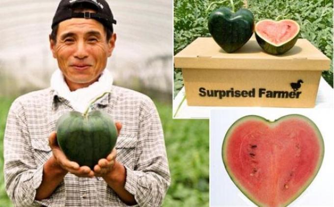 Semanga Unik Berbentuk Hati di Jepang