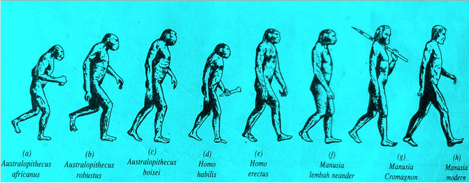 Ras Tertua Di Dunia