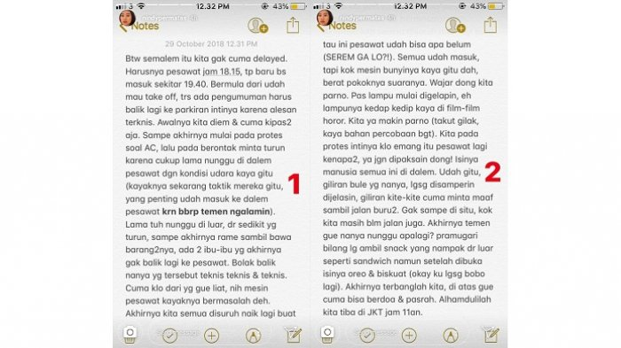 Pengalaman Eks Penumpang Lion Air JT610 Sehari Sebelum Jatuh - IG @NindyPermatas