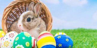 Kelinci Paskah dan Telur Hias